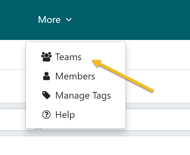 "From the top navigation bar, click on the ""More"" tab. Then scroll down to click on the ""Teams"" button."
